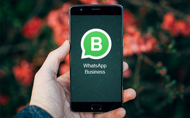 WhatsApp Business Is Now Official