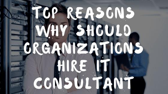 Hire IT Consultant