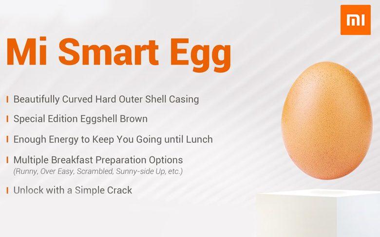Mi Smart Egg
