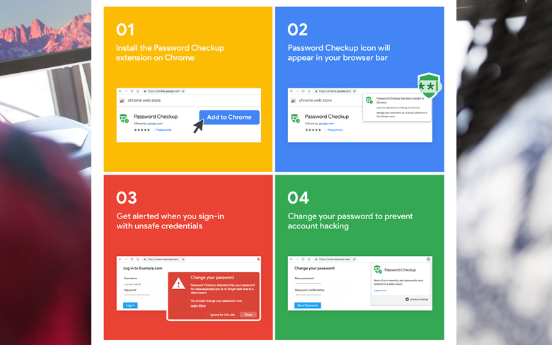 Google Password Protection
