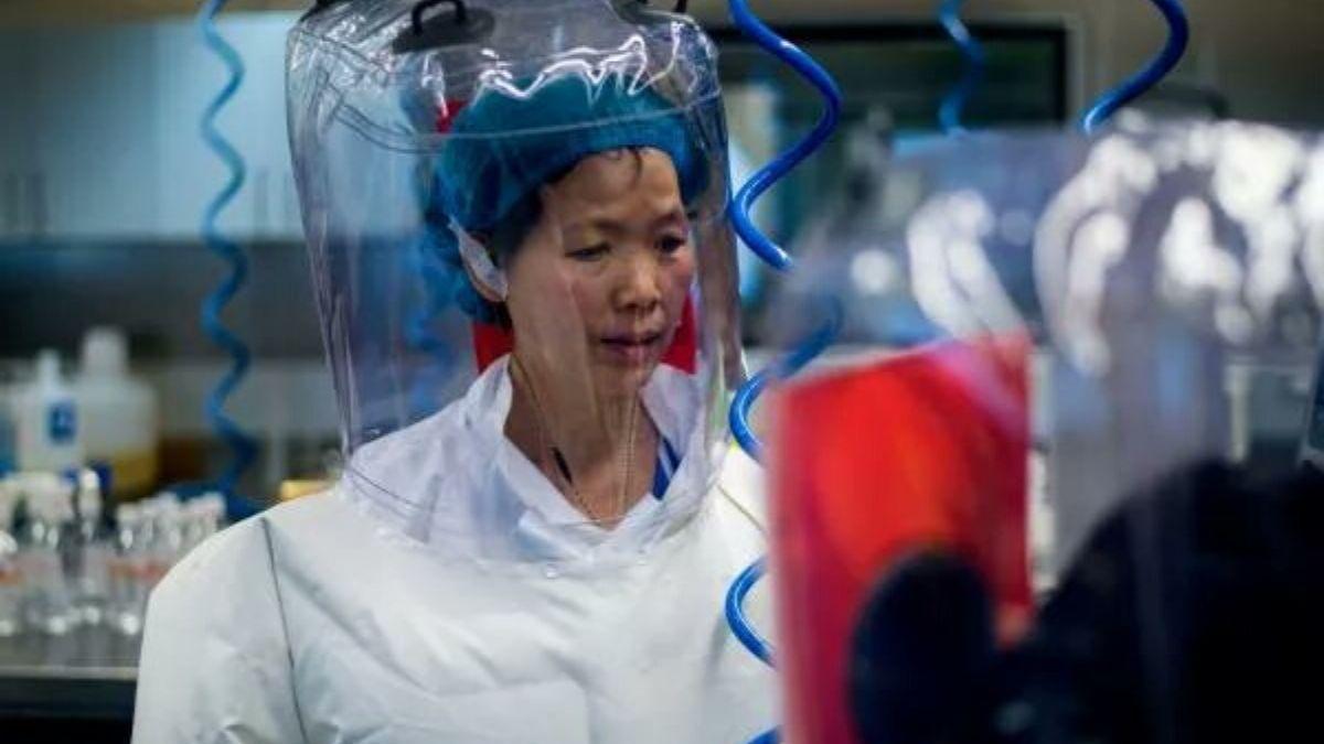 Chinese Virologist