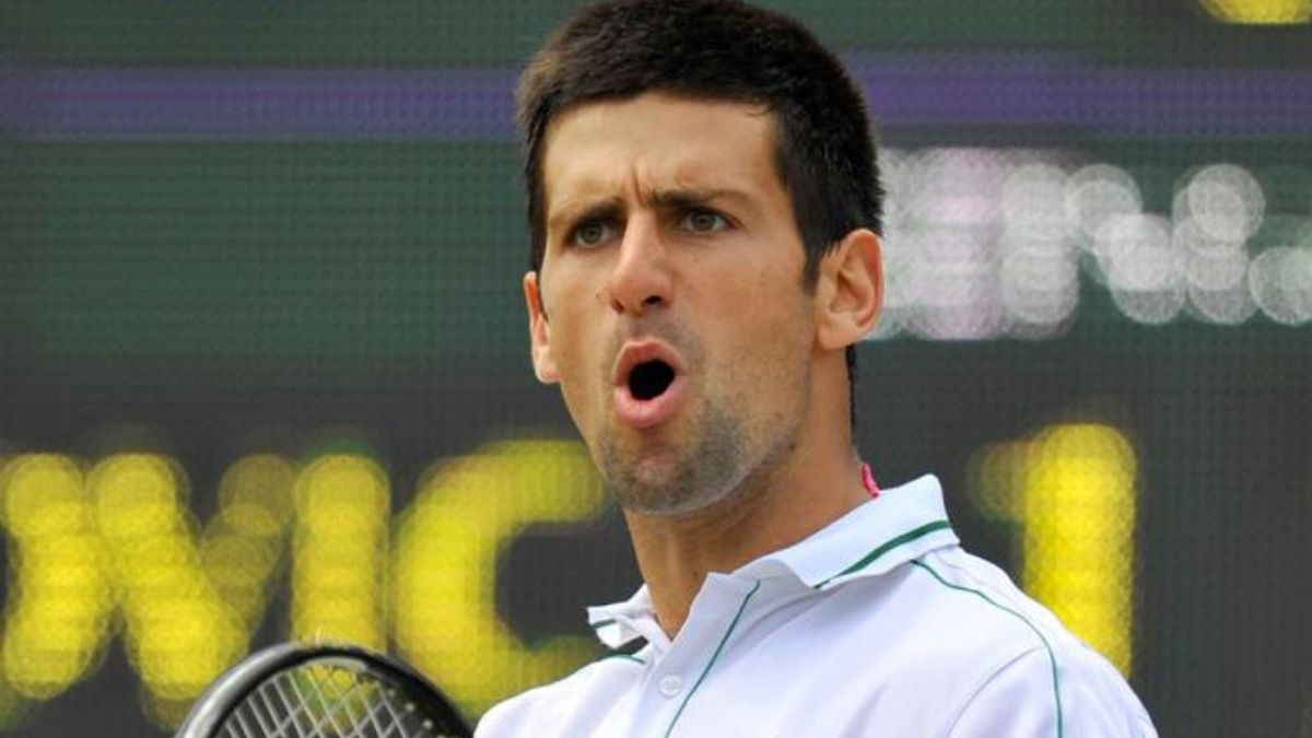 Novak Djokovic Tennis Player