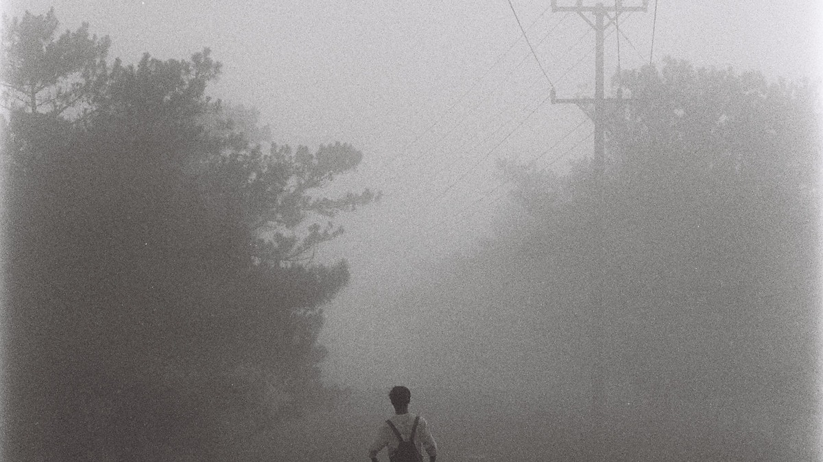Person Walking In Foggy Weather