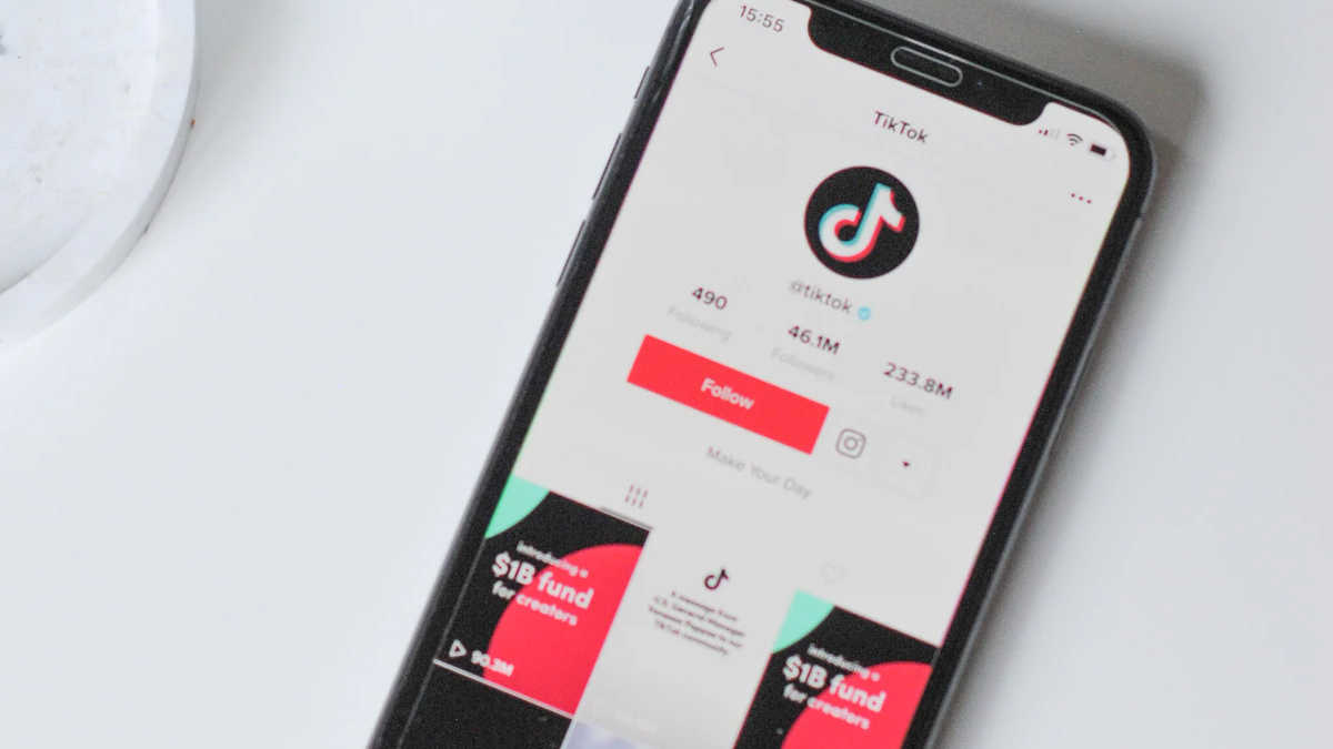 TikTok App Ban