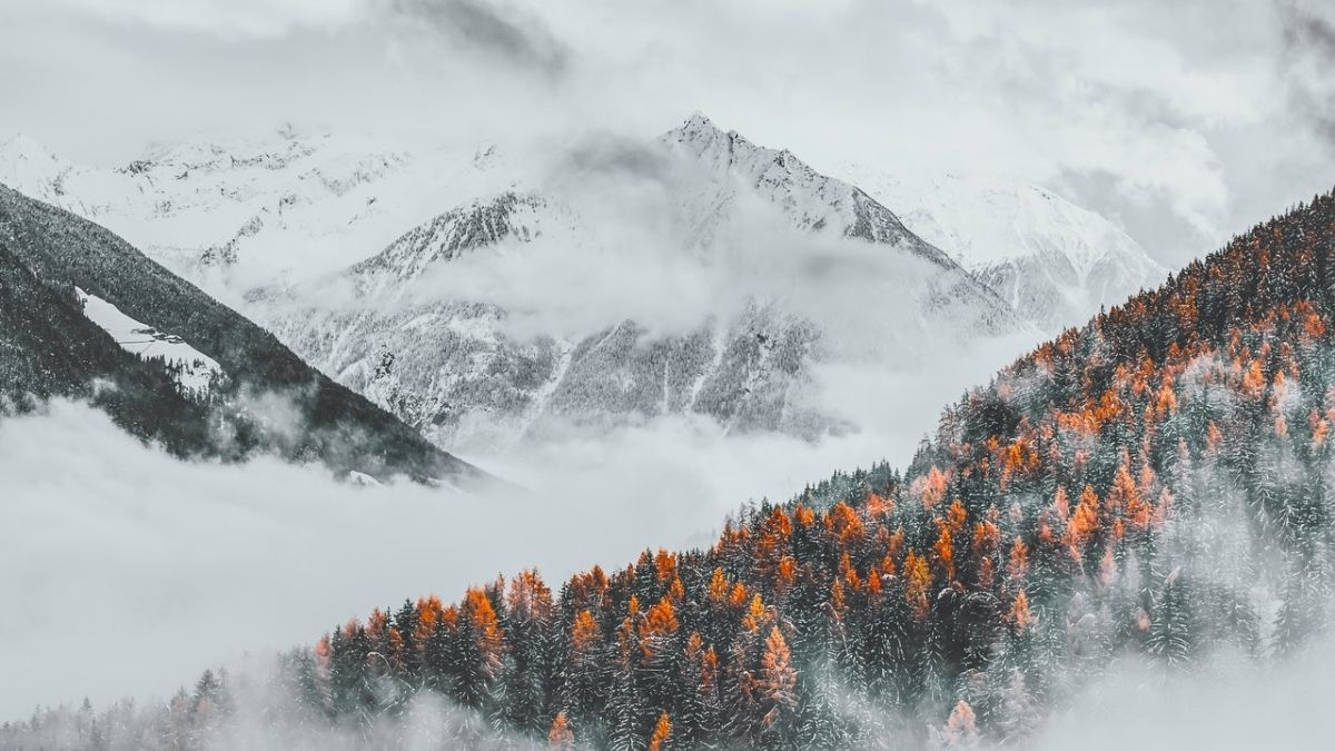 Photo Of Trees Across Mountains Under Cloudy Sky