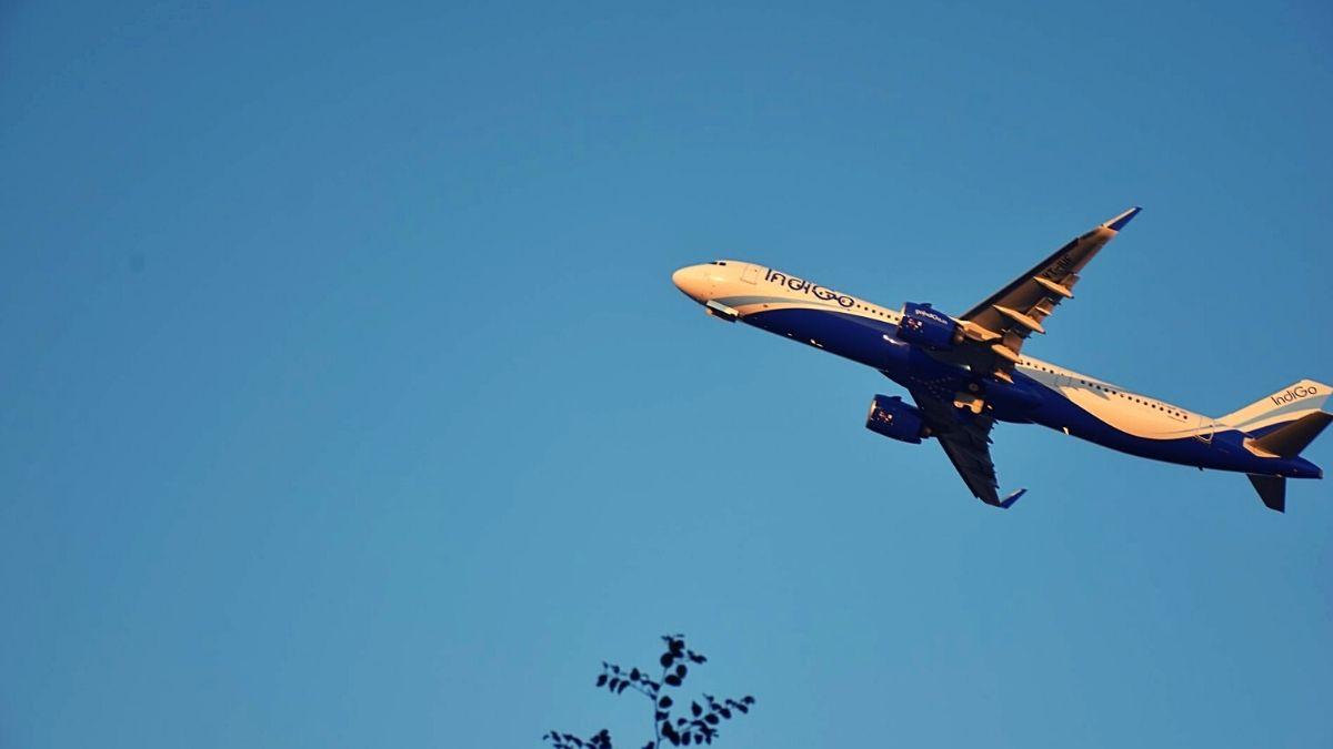 Indigo Plane Sky Blue