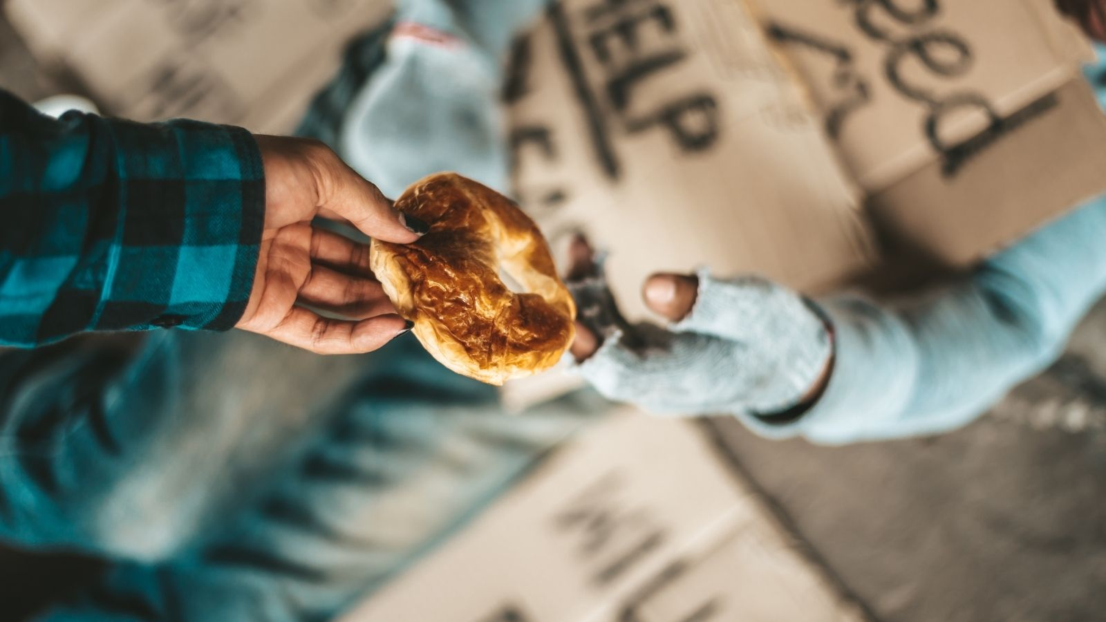 Person Begging Bread