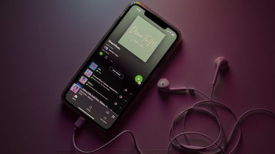 Spotify Feature