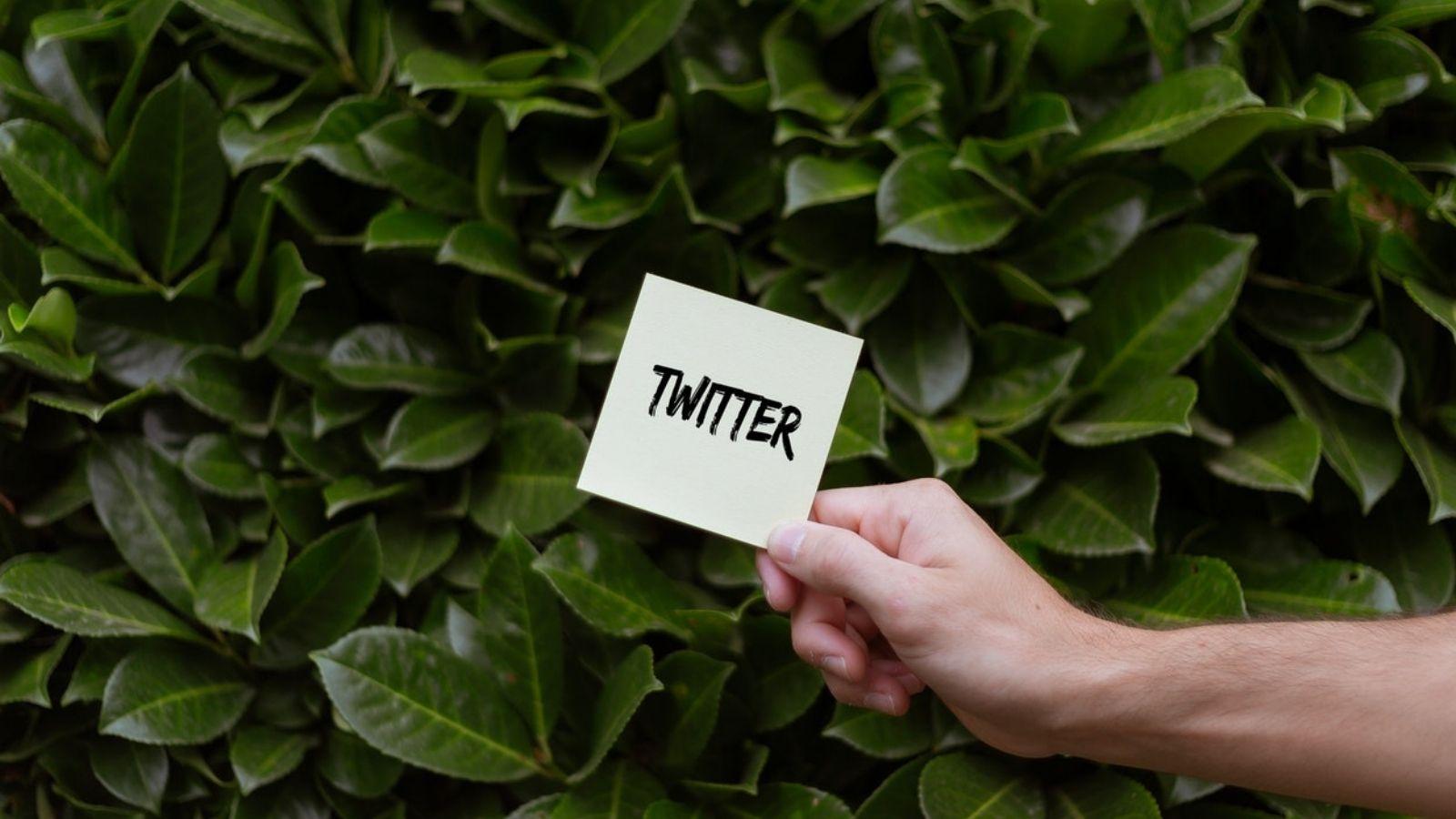 Twitter Paper Text